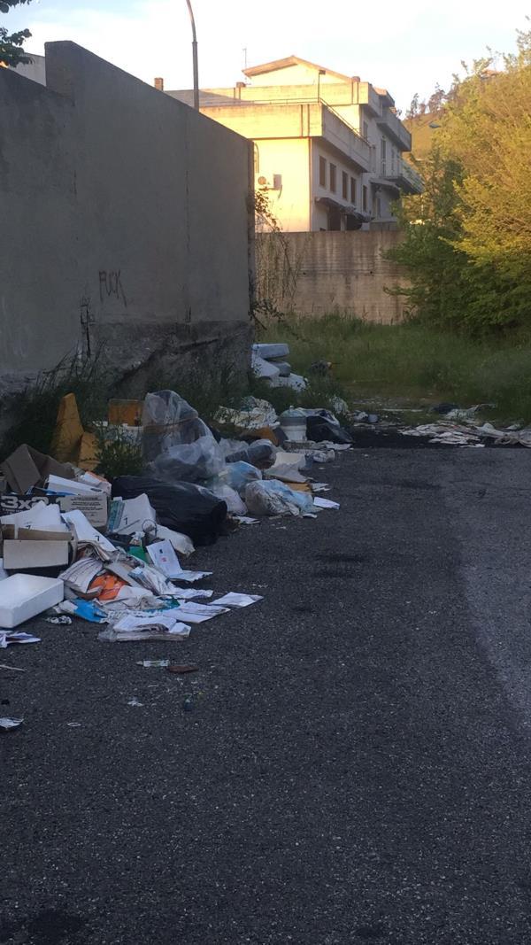 """images Catanzaro. Via Conti Ruffo sommersa dai rifiuti. La denuncia di Cristina Rotundo: """"Una situazione insostenibile"""""""