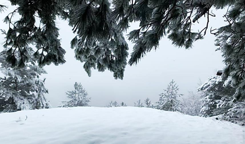 images Maltempo in Calabria: neve in Sila e pioggia e temperature basse in quasi tutta la regione