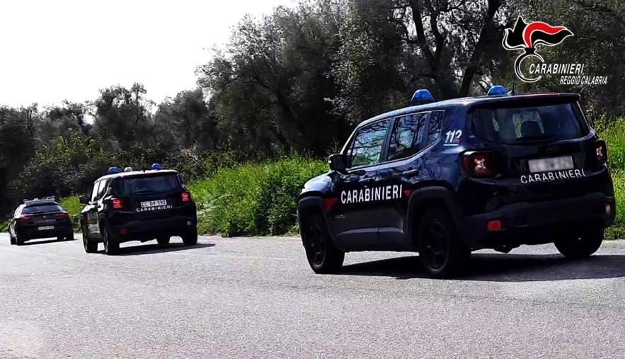 images Controlli dei carabinieri alle aziende agricole nella piana di Gioia Tauro: sanzioni fino a 14mila euro