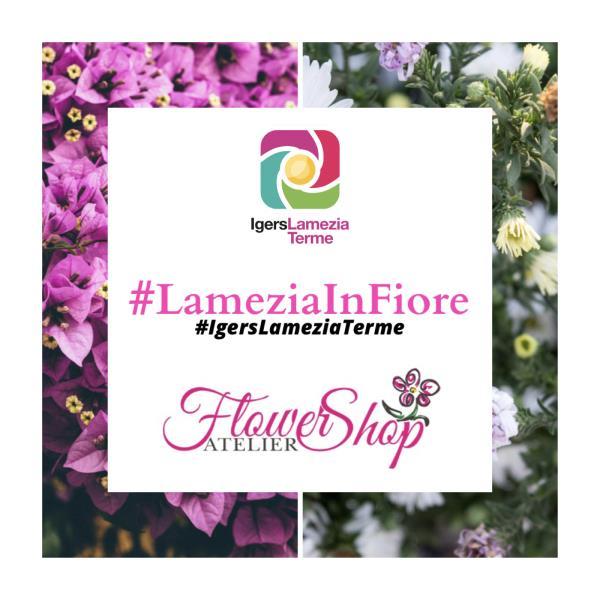 images #LameziaInFiore, il nuovo contest fotografico degli Igers