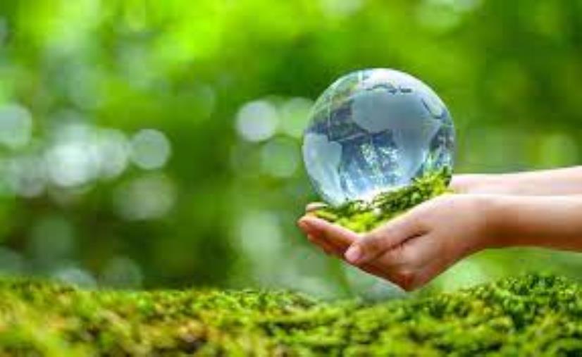 """images Domani giornata mondiale dedicata al tema """"Ripristino degli ecosistemi"""": tante le iniziative nel Cosentino"""