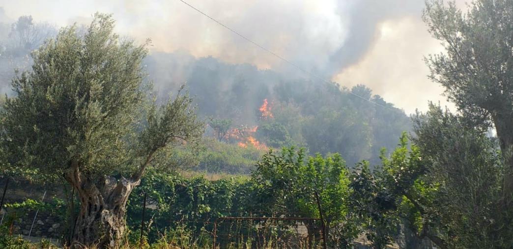 images Incendio a Reggio: in azione la task force guidata da Calabria Verde