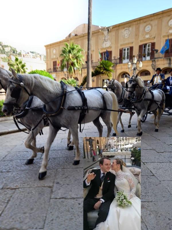 """images Da Petronà a Monreale: i cavalli della scuderia Angilletti """"accompagnano"""" le nozze tra il principe di Borbone e lady Charlotte Diana"""