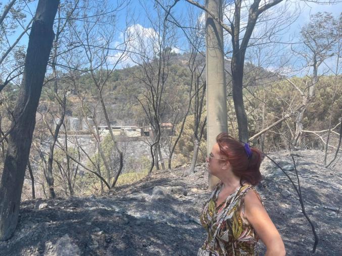 """images Incendi, la riflessione della senatrice Granato su: """"Quel che resta del Parco di Siano e del podere delle Carrozze"""""""