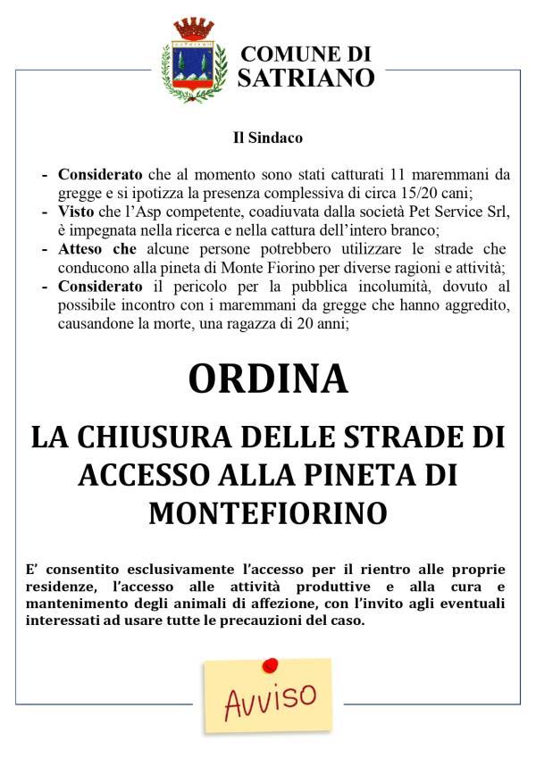"""images Tragedia di Satriano. Il Comune chiude le strade che portano alla """"Pineta Montefiorino"""""""