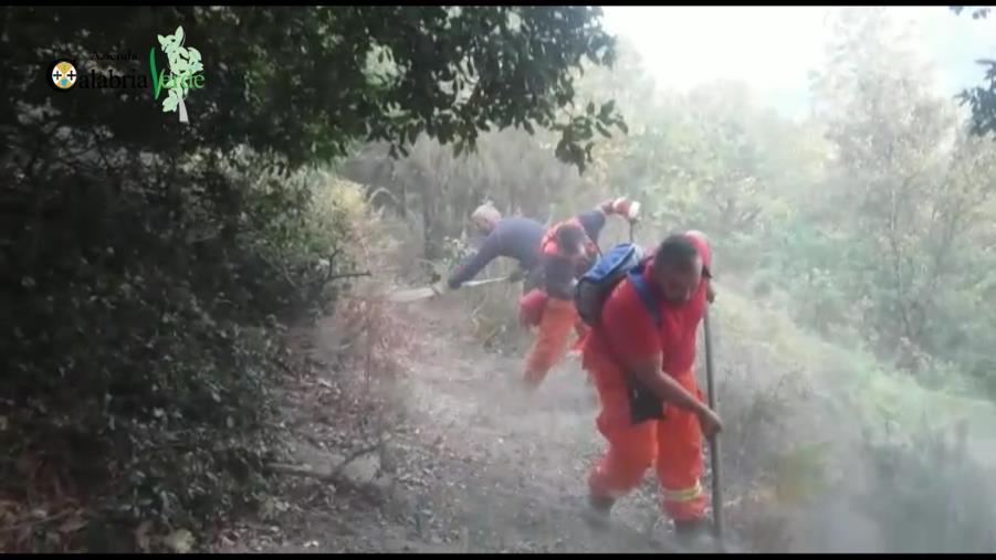 images Emergenza incendi, il commissario di Calabria Verde mobilita tutti gli operai idraulico-forestali per presidiare il territorio