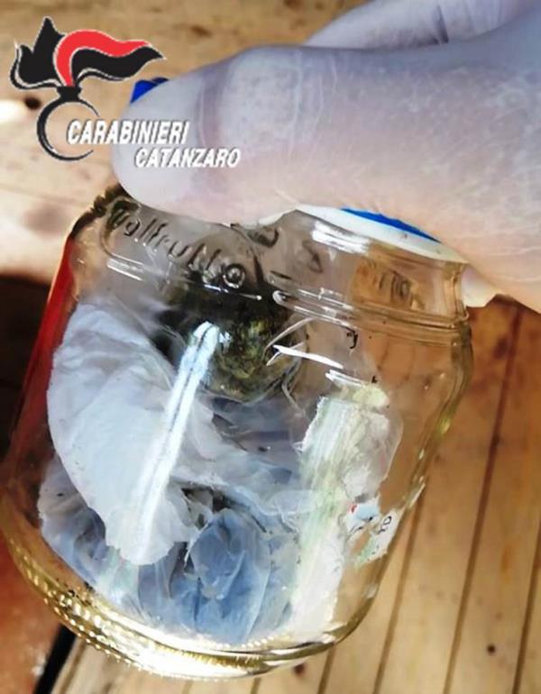 images Soveria Mannelli, beccati in auto con 20 grammi di marijuana: 2 arresti
