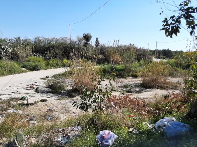 """images Ancora rifiuti nel torrente Scilotraco al confine tra Cropani e Sellia Marina. I sindaci: """"L'area sarà videosorvegliata"""""""