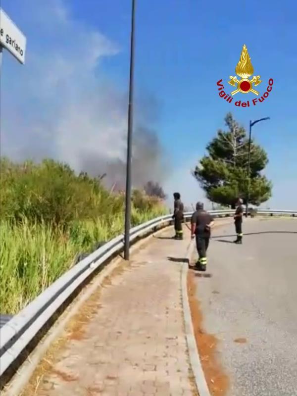 images Catanzaro. Incendio tra via Fares e via Gariano: fiamme vicino alle case