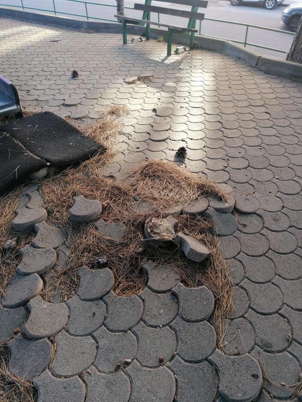 """images Catanzaro. Sergio Costanzo: """"I parchi pubblici ostaggio di abbandono e degrado"""""""