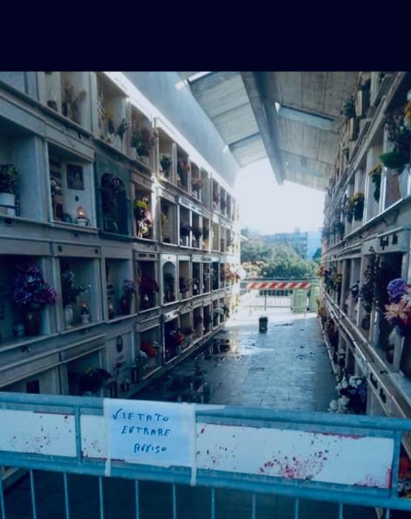 """images Catanzaro, liquidi organici e cattivi odori al cimitero di Gagliano. Il Codacons: """"Sembra un film horror"""""""