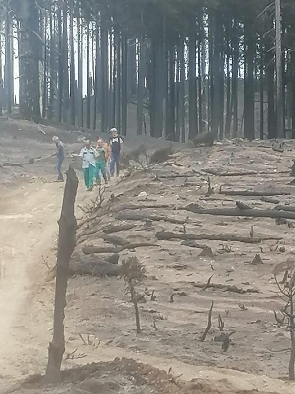 images Domato l'incendio che da giorni interessa con insistenza l'Area Grecanica Reggina