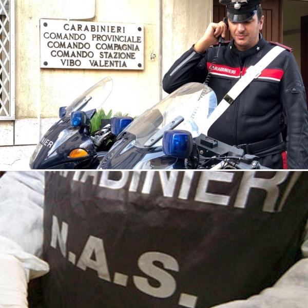 images Vibo Valentia, sequestrati oltre settanta chili di prodotti ittici