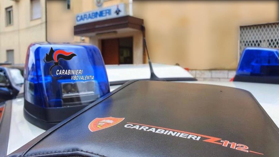 images In fiamme una discarica comunale nel Vibonese: indagano i carabinieri