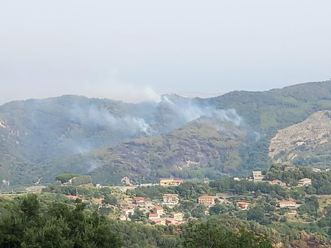 """images Emergenza incendi a Catanzaro. Riccardo Elia: """" C'era una volta il """"Bosco Li Comuni""""… Sindaco, se ci sei, batti un colpo!"""""""