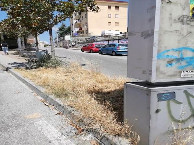 images Piazza Montenero, Cristina Rotundo denuncia situazioni di degrado
