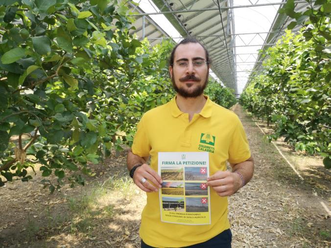 """images Clima, Coldiretti Calabria: """"I giovani agricoltori calabresi lanciano la petizione contro i pannelli mangia suolo"""""""
