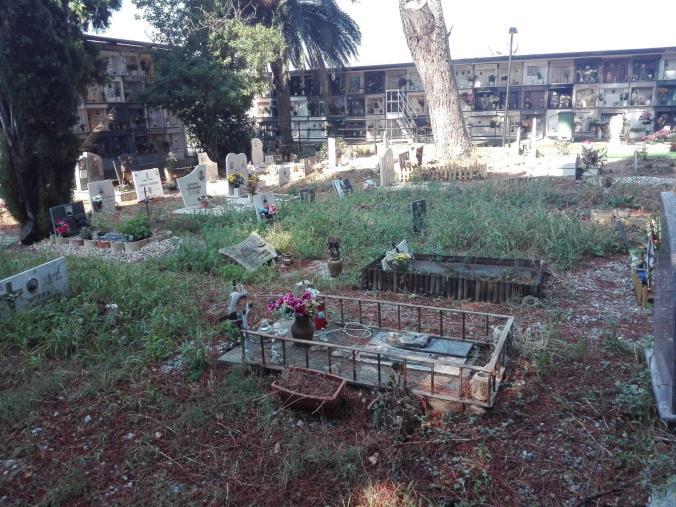 """images """"Il cimitero di Gagliano offeso dal degrado"""": la denuncia di #fareperCatanzaro"""