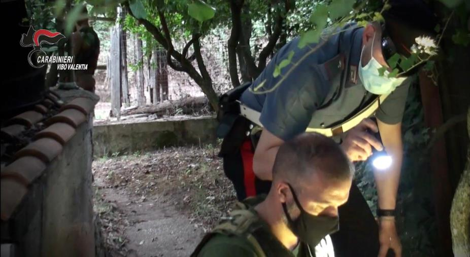 images 'Ndrangheta nel Vibonese. Cinque esponenti della famiglia Soriano in manette per traffico di droga