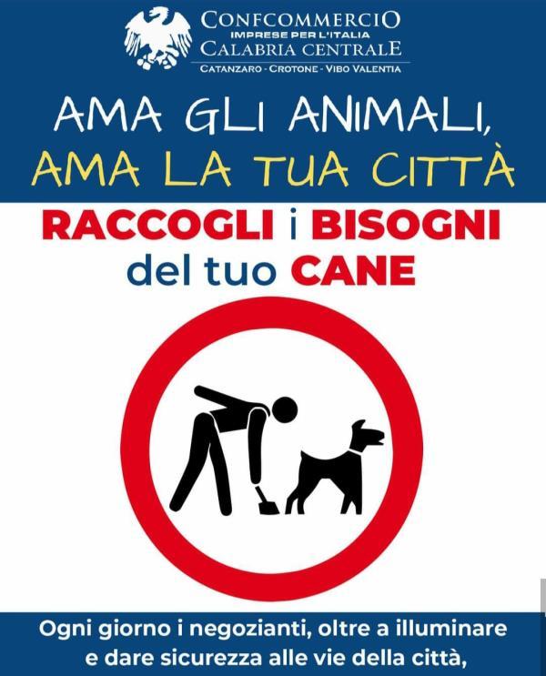 """images Confcommercio Catanzaro lancia la campagna: """"Ama gli animali, ama la tua città: raccogli i bisogni del tuo cane"""""""
