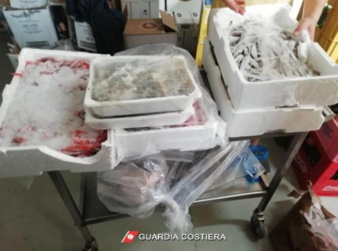 """images """"Mare Sicuro 2021"""": sequestrati 900 chili di pesce ad una struttura balneare di Corigliano-Rossano"""