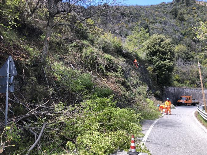 """images Viabilità. Proseguono i lavori di sistemazione dei versanti rocciosi lungo la Ss 109bis e la Ss280 """"Dei due mari"""" a Catanzaro"""