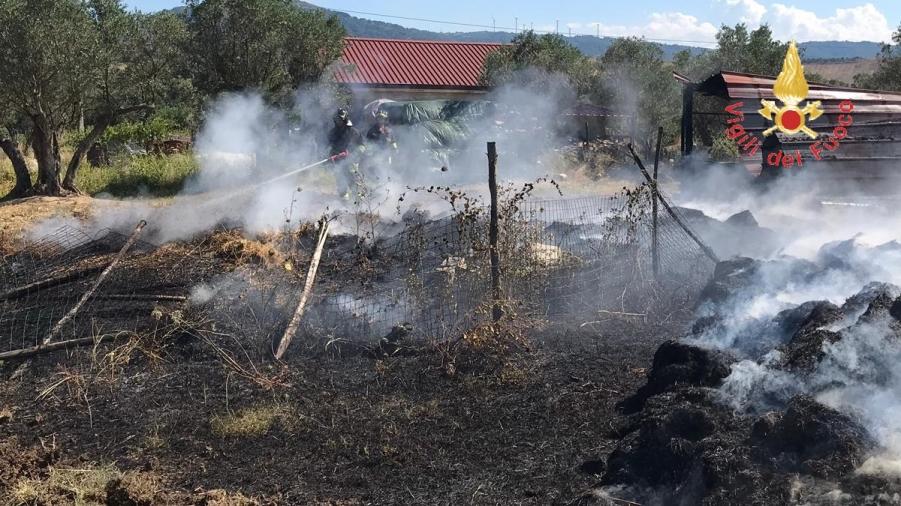 images Incendio a Squillace, in fiamme rifugio di animali d'allevamento vicino ad abitazioni