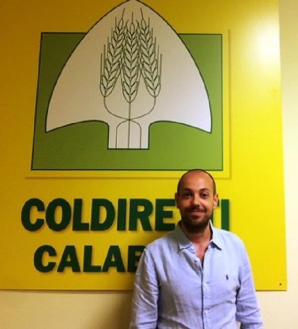 """images Coldiretti: """"Il nubifragio nel Vibonese ripropone l'altra emergenza calabrese, il dissesto idrogeologico. Solidarietà alle aziende colpite"""""""