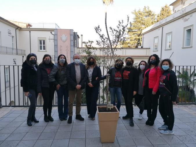 images Cosenza. One Billion Rising pianta un albero di ulivo nel Palazzo del Governo contro le violenze di genere