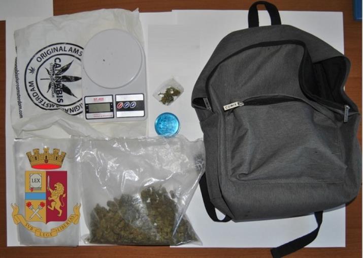 images Catanzaro. Trovato con la marijuana in casa: arrestato un 47enne