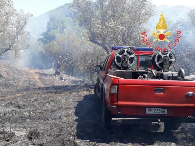 images Catanzaro, scoppia l'incendio e i cittadini bloccano il piromane (IN AGGIORNAMENTO)