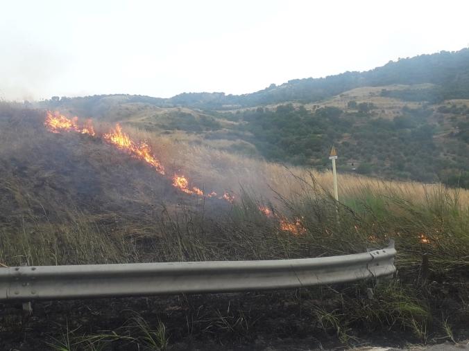 images Le fiamme arrivano fino alla strada provinciale