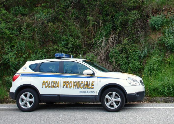 images Trovati dalla Polizia provinciale di Cosenza 4 autocarri rubati: erano stati nascosti in un capannone della Provincia