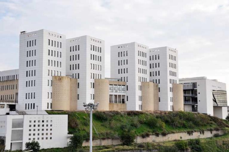 Controlli canapa sativa: c'è  un accordo tra i carabinieri e il dipartimento di Agraria dell'Università di Reggio Calabria