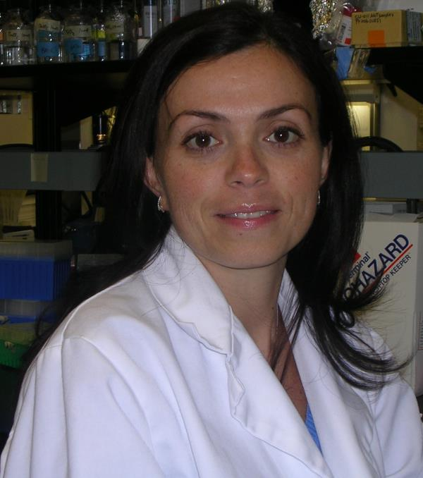 Catanzaro. Assegnato alla prof. Paola Neri il premio 'Ken Anderson Young Investigator Award'