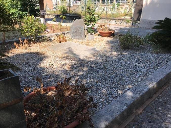 images La tomba dell'artista catanzarese Mimmo Rotella abbandonata tra le sterpaglie