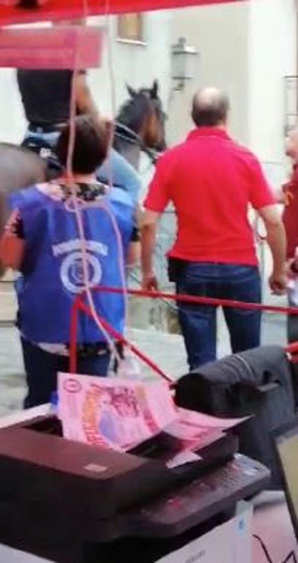 images Tragedia sfiorata alla festa dei bimbi a Gimigliano: ubriaco a cavallo denunciato (VIDEO)