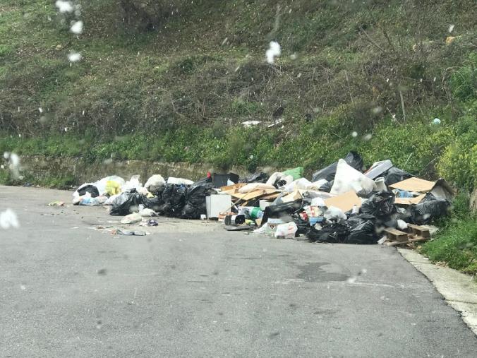 images Catanzaro. Furbetti della spazzatura fuori controllo in via Smaldone: ora si reclamano interventi definitivi