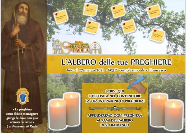 """images Paola, i Frati inventano """"L'albero di San Francesco"""", per raccogliere le preghiere dei fedeli"""