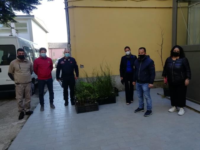 """images Girifalco pianta un """"Albero per il futuro"""" della comunità"""