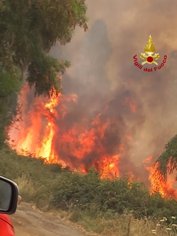 images Lamezia Terme. Vasto incendio nei pressi del campo rom, il fumo arriva fino all'ospedale