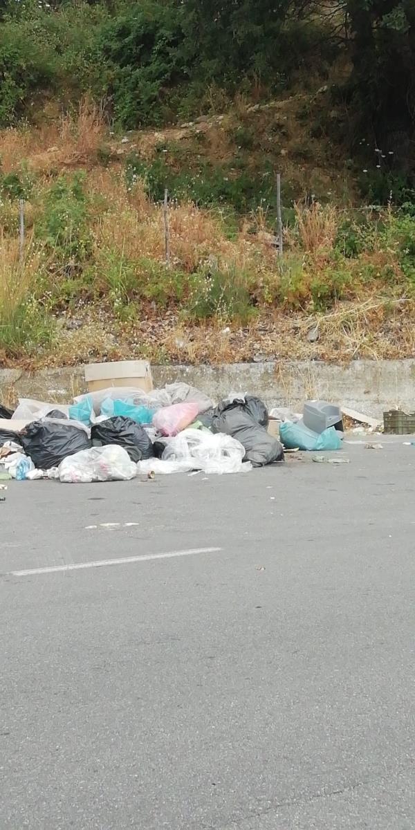 images Catanzaro. Tanti rifiuti e nessuna fototrappola: la solita incuria di via Smaldone (FOTO)