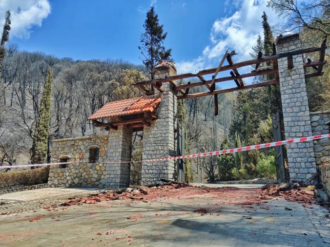 """images Incendi a Catanzaro, Collevento: """"Daremo il nostro contributo per la rinascita della Pineta di Siano"""""""