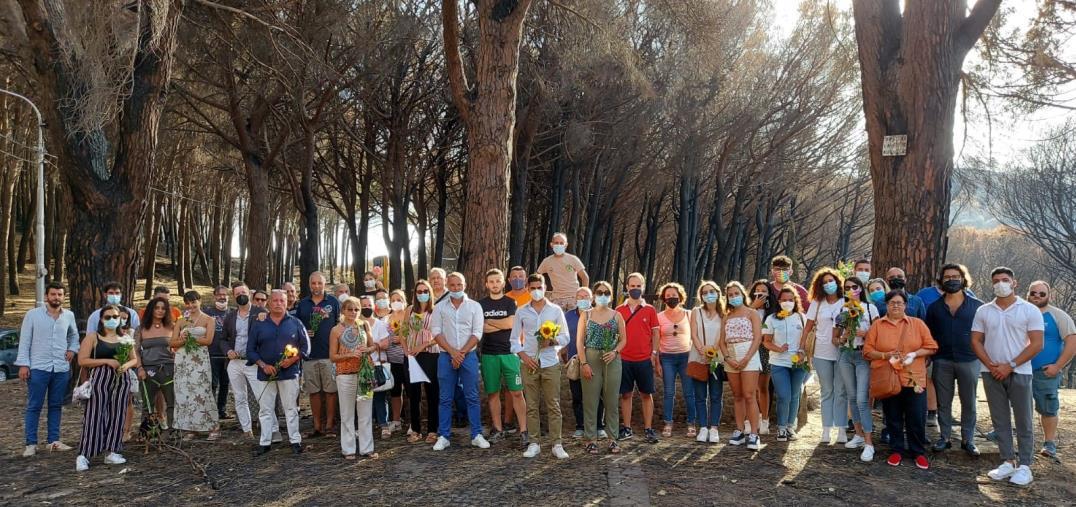 """images Fiori e colori nella pineta di Siano dopo l'appello di Alfredo Moniaci: """"Spero sia l'inizio per dei progetti di riqualifica"""""""