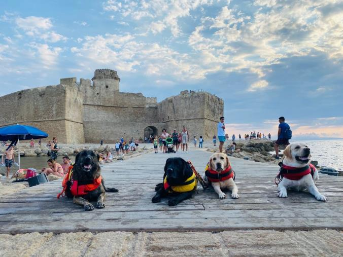 images Crotone. In spiaggia con i 4 zampe dell'Associazione Cani Salvataggio all'insegna di prevenzione e sicurezza