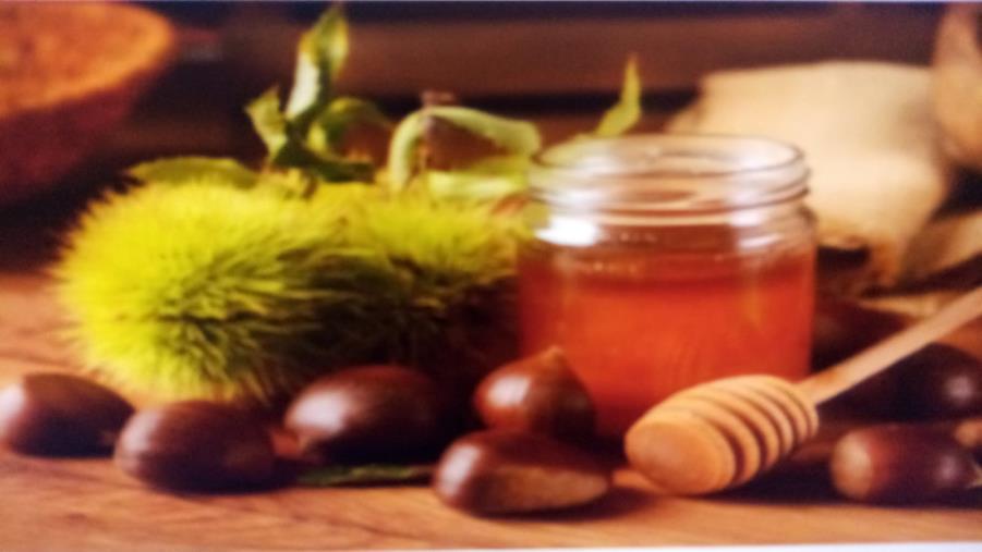 """Il miele di castagno di Amaroni si aggiudica il premio nazionale """"Il Miele del Sindaco"""""""