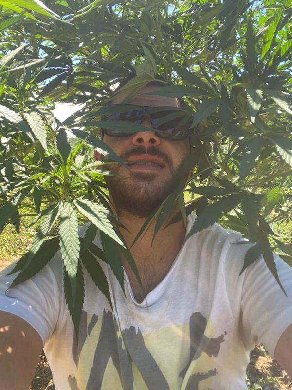 L'inchiesta. Benvenuti nella terra di Vito, dove libertà e lavoro hanno il profumo della cannabis light