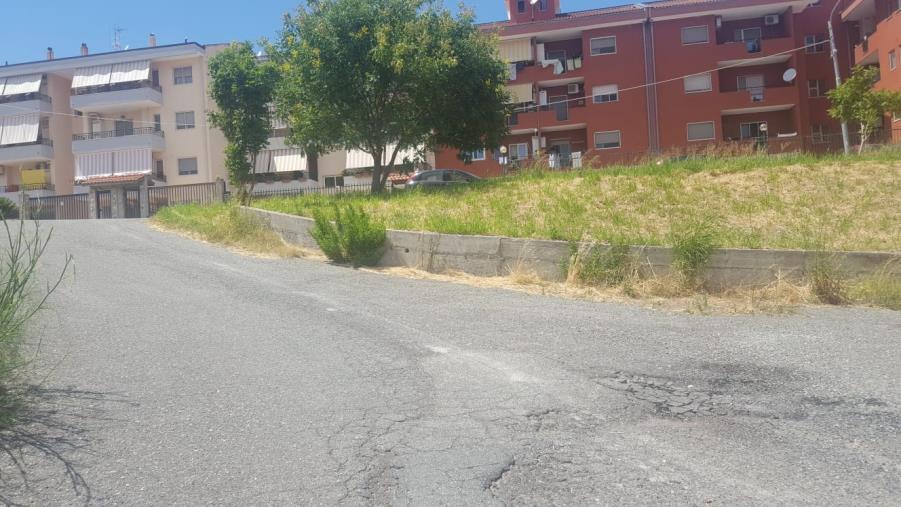images Rotundo #fareperCatanzaro: il grido d'allarme della periferia abbandonata