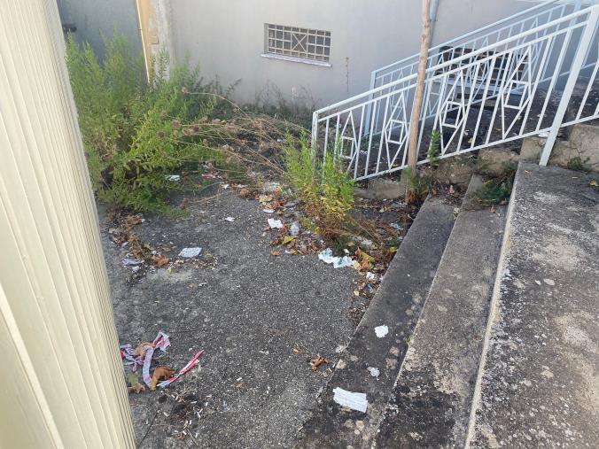images Erbacce, feci, animali morti: la vergogna dell'esterno dell'aula bunker di Catanzaro