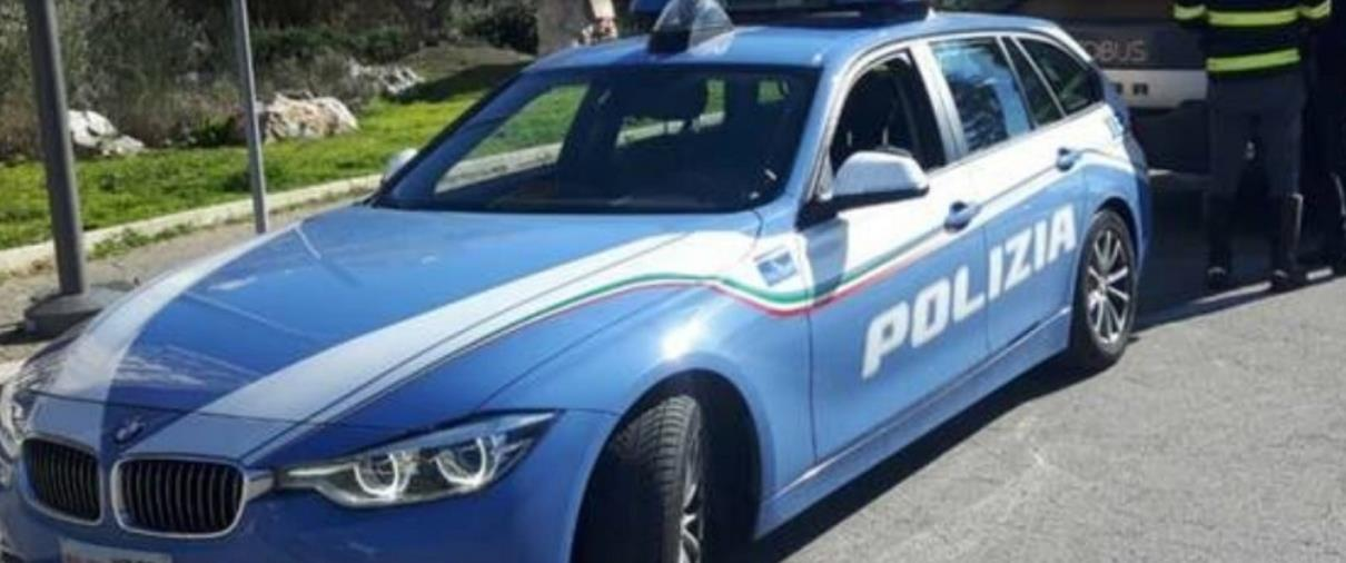 images La Polizia stradale di Catanzaro salva tre cani che vagavano in autostrada